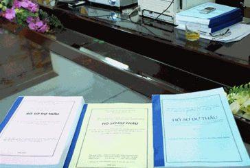 Hồ sơ xin giấy phép dự thầu của công ty nước ngoài tại Việt Nam